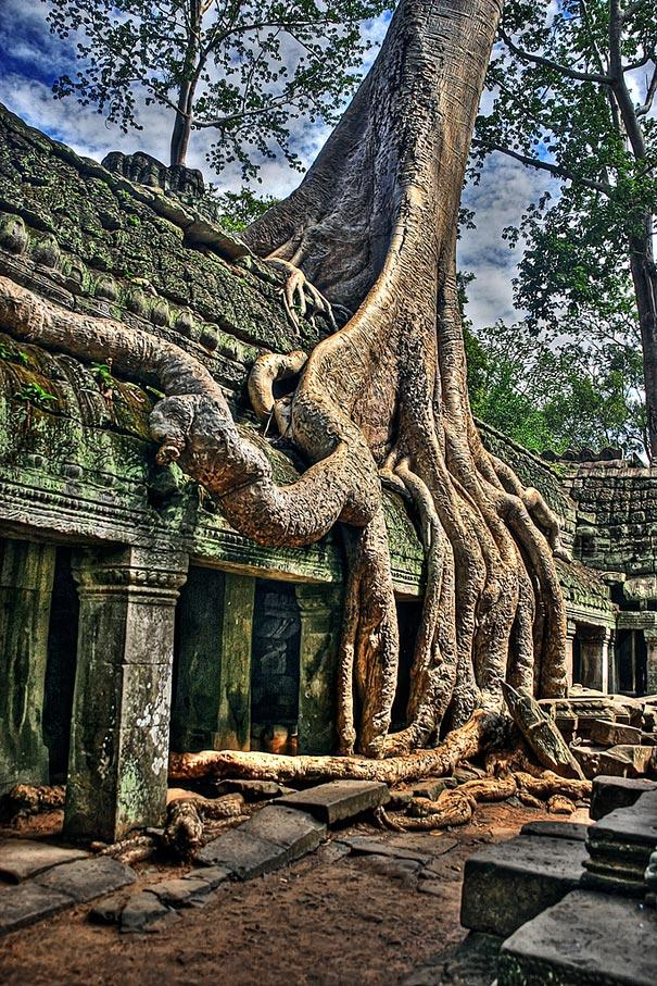 amazing-places-angkor-wat-3