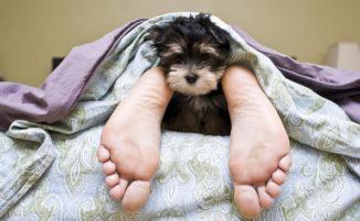 7 cose che non dovresti mai fare a letto (e 2 che non si possono non fare)