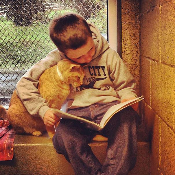 reading-children-shelter-cats-book-buddies-11