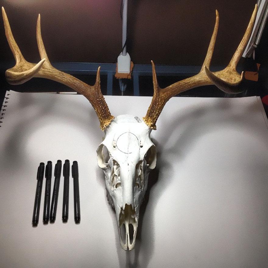 animal-skull-art-peter-deligdisch-14