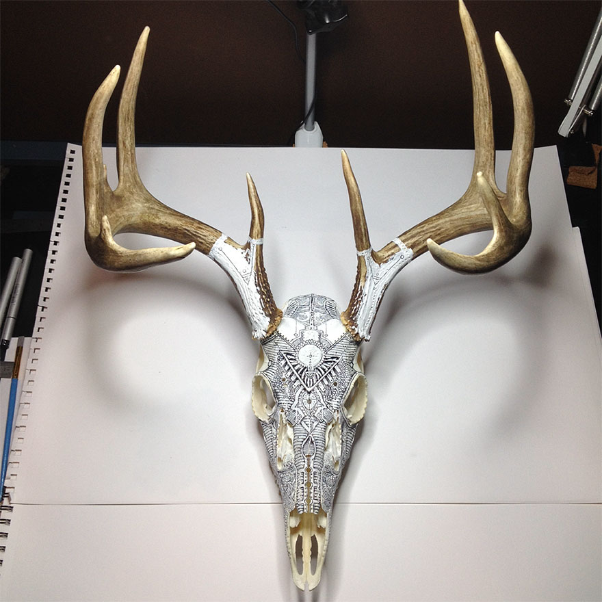 animal-skull-art-peter-deligdisch-6__880