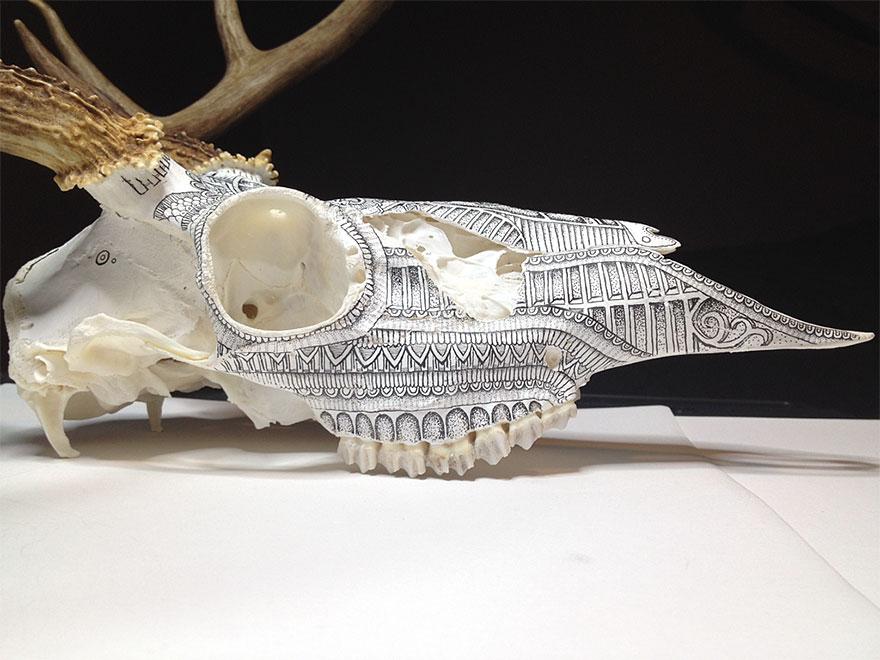 animal-skull-art-peter-deligdisch-8__880