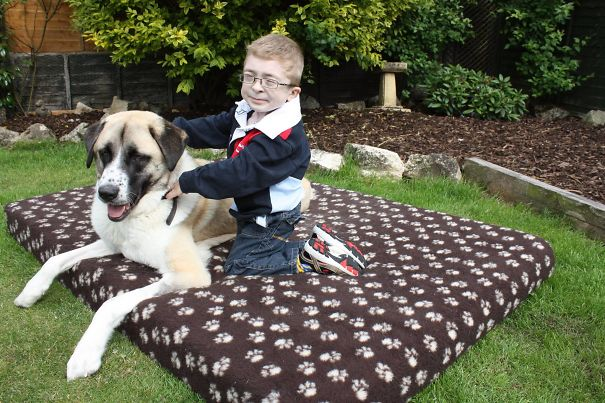 damn-these-onions-insperational-story-of-a-boy-and-his-dog3_