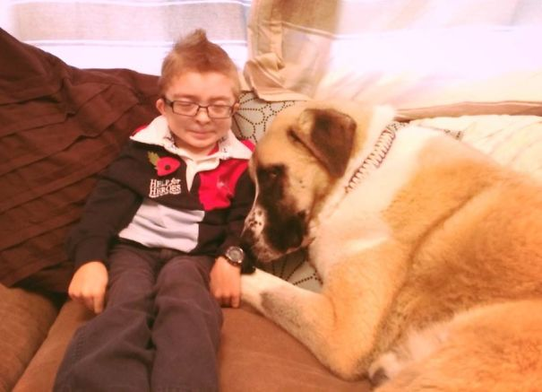 damn-these-onions-insperational-story-of-a-boy-and-his-dog5_
