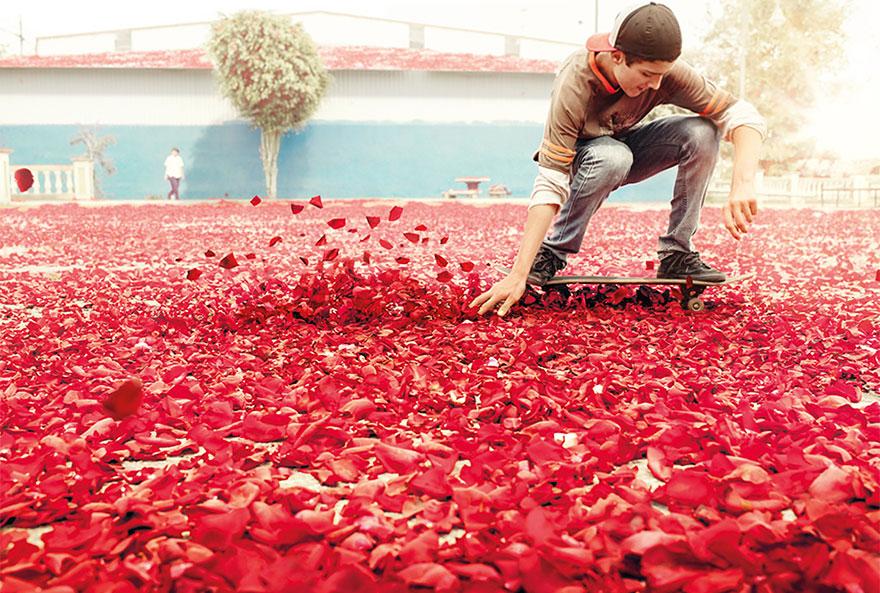 flower-petal-explosion-sony-4k-ultra-hd-3