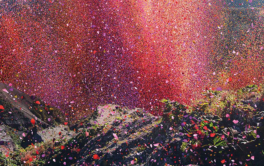flower-petal-explosion-sony-4k-ultra-hd-8