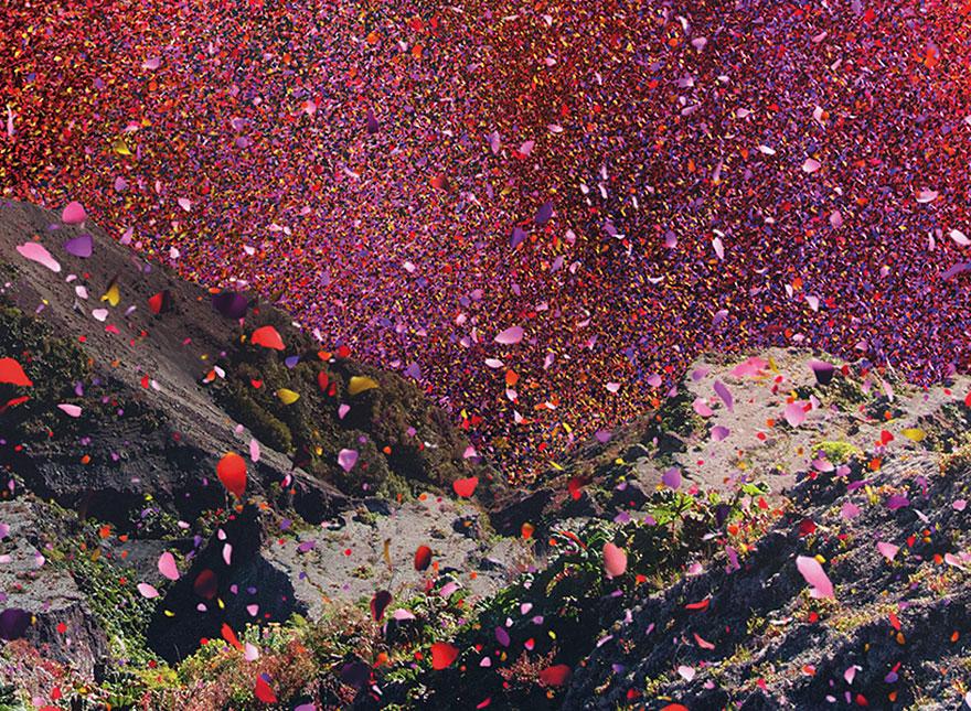 flower-petal-explosion-sony-4k-ultra-hd-9