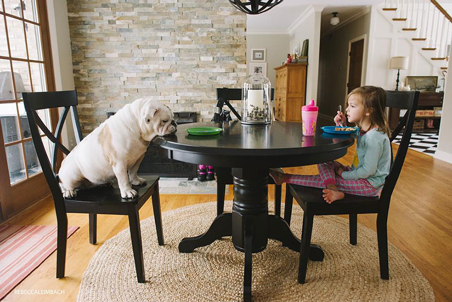 girl-english-bulldog-friendship-photography-lola-harper-_015