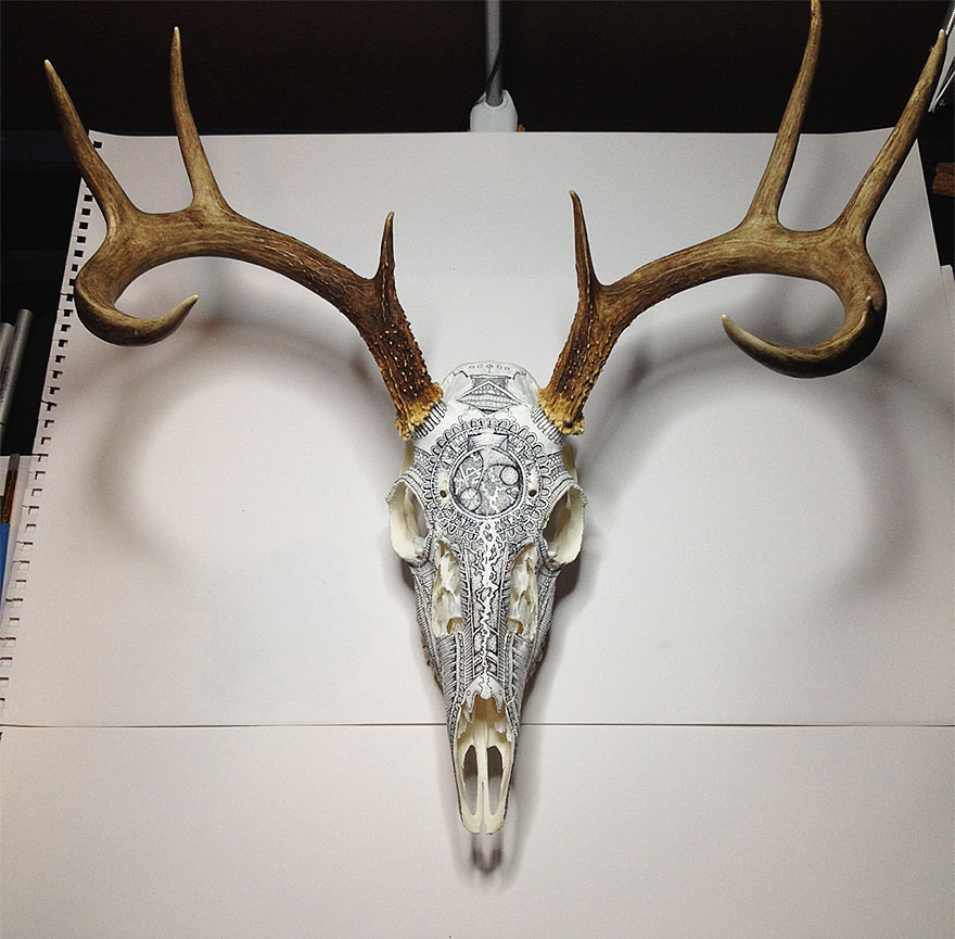 incredible-animal-skull-art-by-peter-deligdisch__880