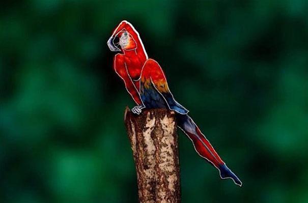 parrot-optical-illusion-body-art-johannes-stoetter-2