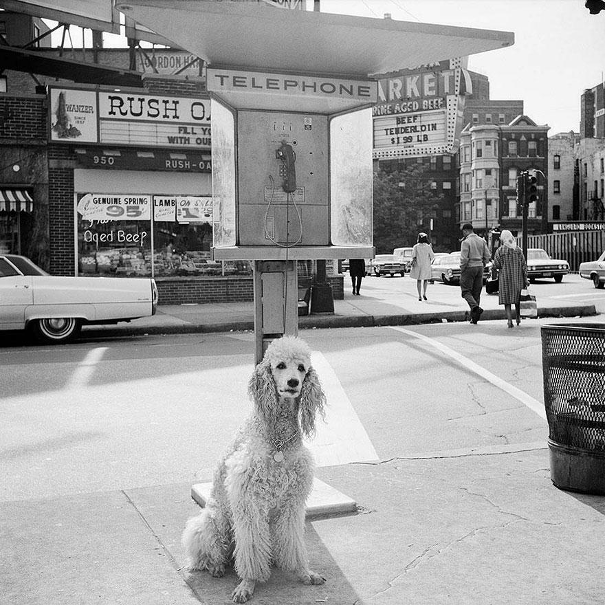 street-photos-new-york-1950s-vivian-mayer-32