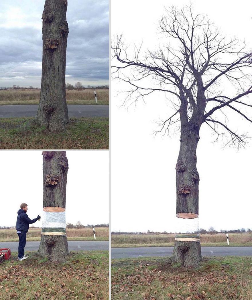 illusione-albero-sospeso