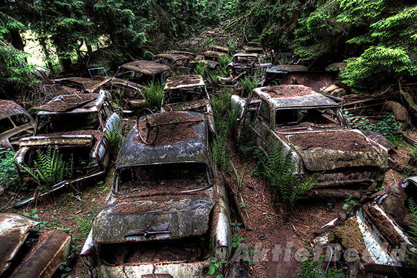 cimitero-auto-abbandonate-chatillon-belgio