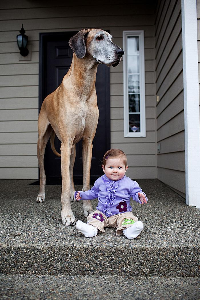 Bambini con grandi
