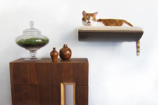 mobili-casa-animali-domestici-cani-gatti