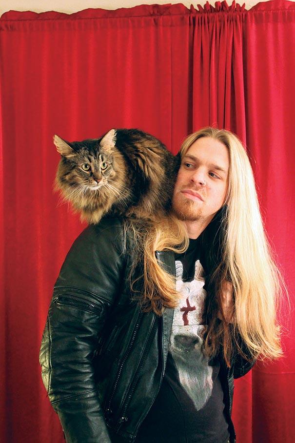 metal-cats-gatti-musicisti
