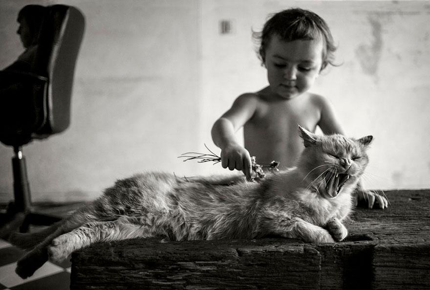 bambini-che-giocano-con-gatti-fotografia-23