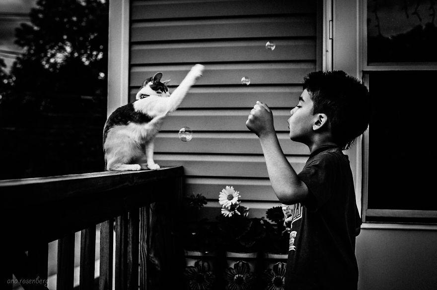 bambini-che-giocano-con-gatti-fotografia-27