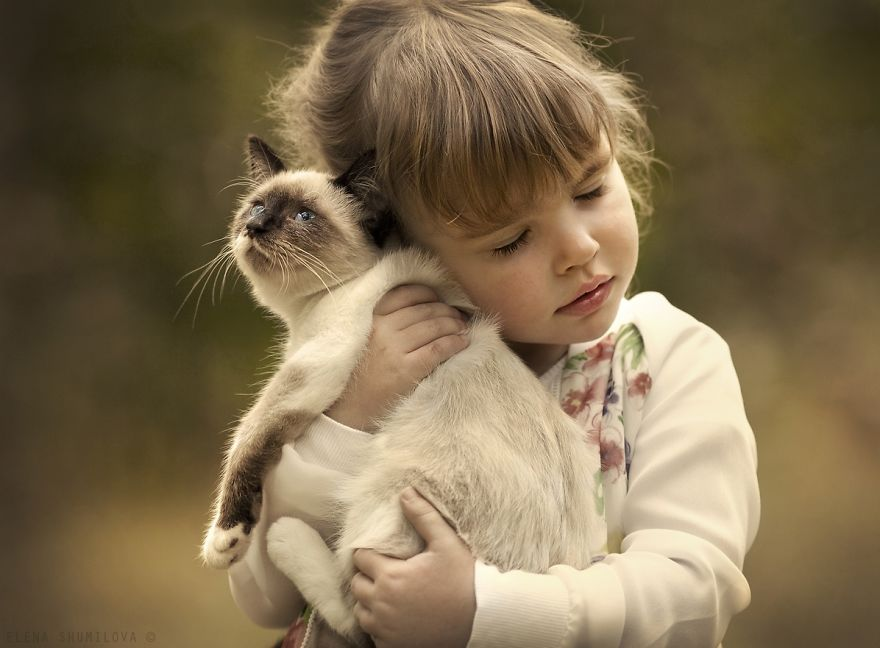 子供がイヌをいじめます! どうすればいいのでしょうか?まだ3歳の子供がいます。子供は動物好きで、飼っているワンちゃん ...