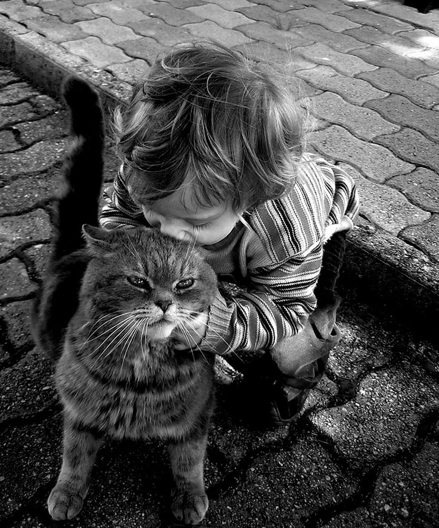 bambini-che-giocano-con-gatti-fotografia-40