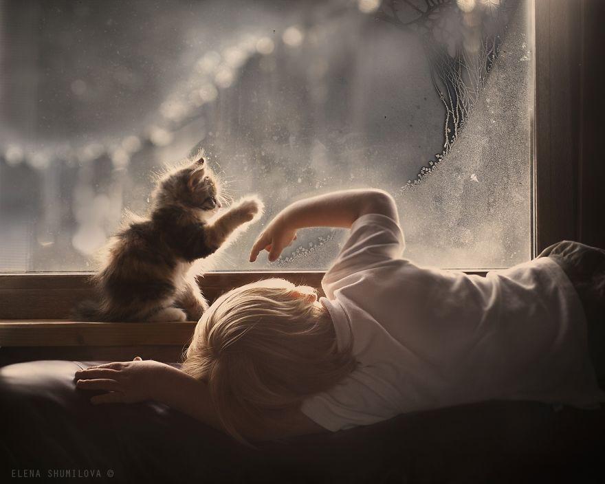 bambini-che-giocano-con-gatti-fotografia-51