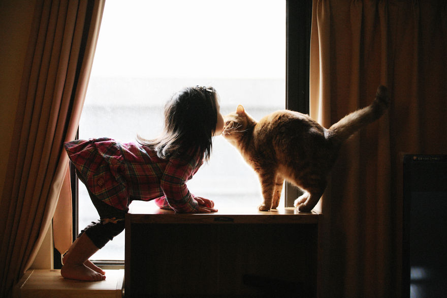 bambini-che-giocano-con-gatti-fotografia-55