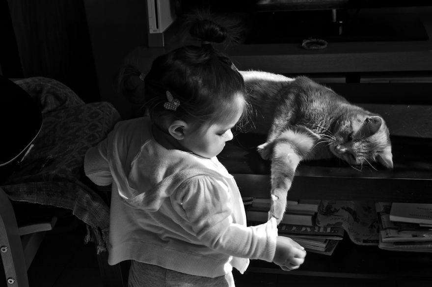 bambini-che-giocano-con-gatti-fotografia-56