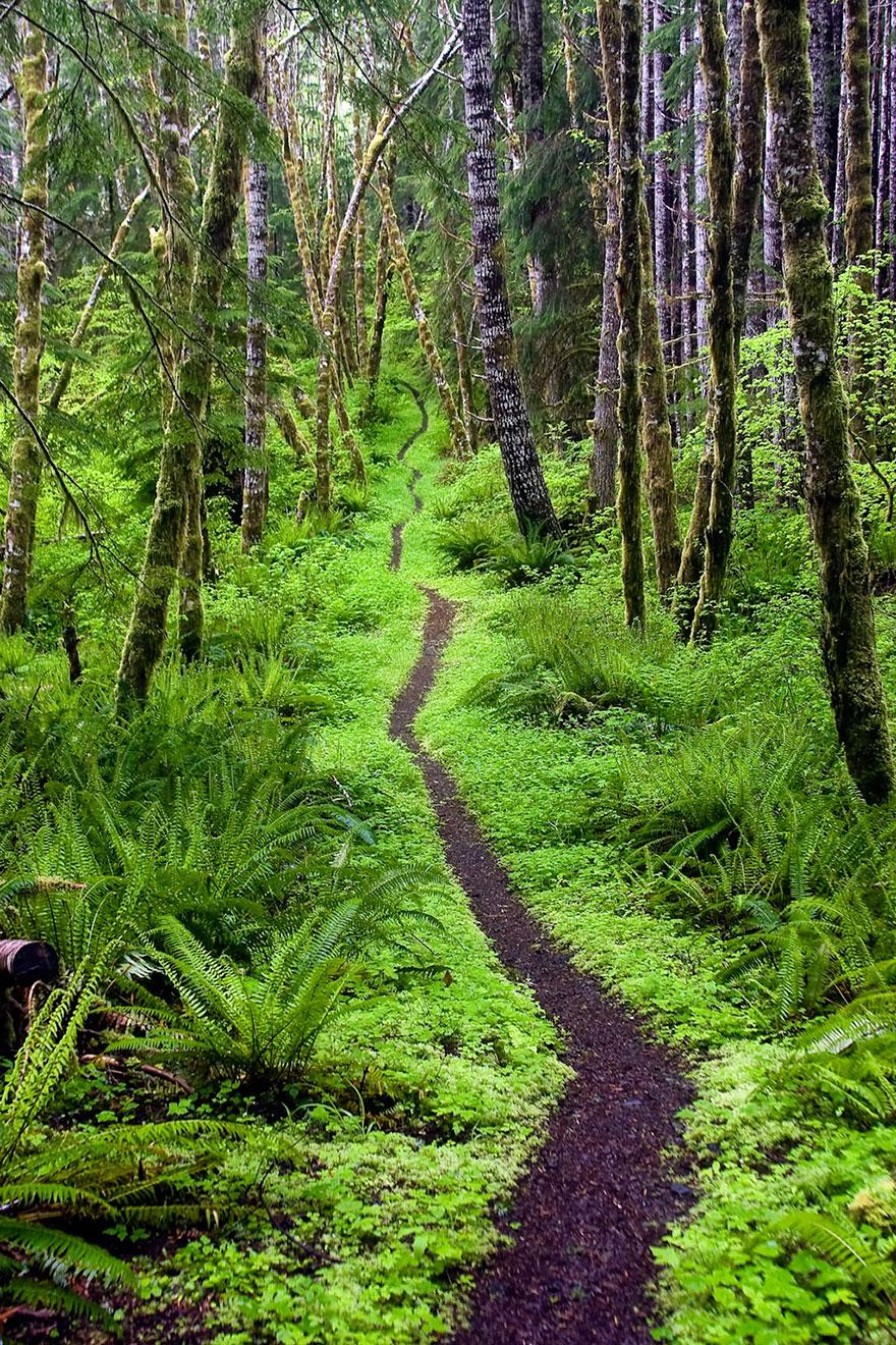 fotografia-natura-america-concorso-wilderness-forever-09