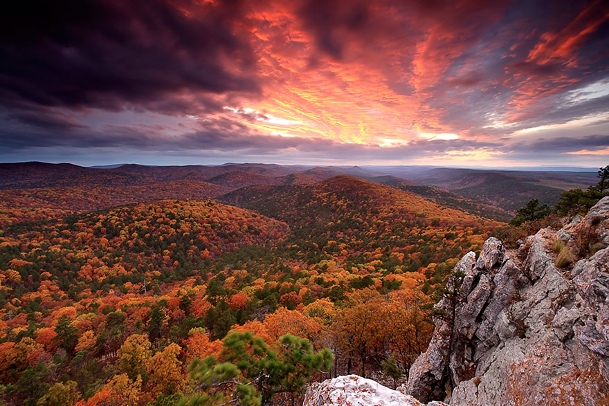 fotografia-natura-america-concorso-wilderness-forever-10