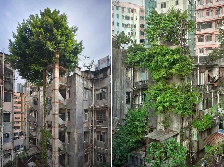 natura-luoghi-abbandonati-15