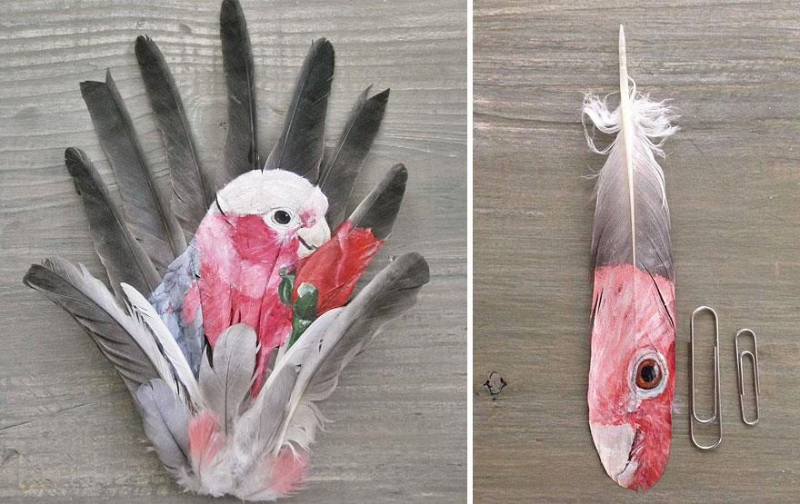 olio-acrilico-pittura-penne-piume-pappagallo-jamie-homeister13