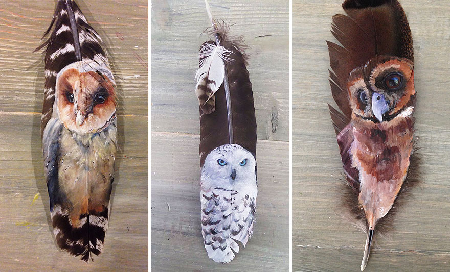 olio-acrilico-pittura-penne-piume-pappagallo-jamie-homeister19