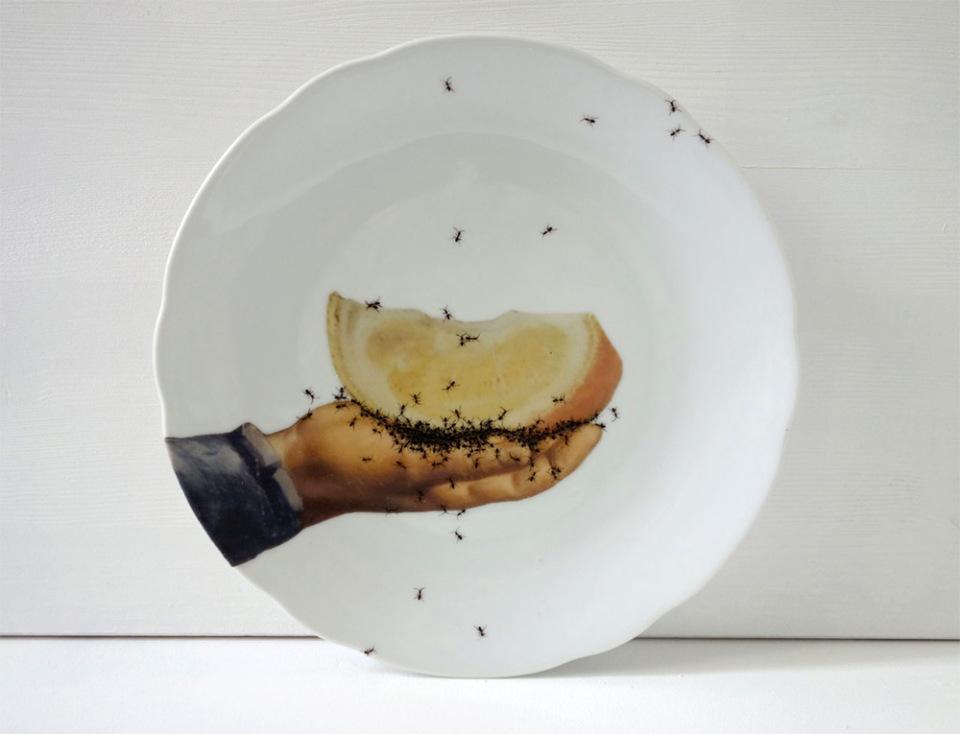 piatti-porcellana-dipinti-a-mano-formiche-Evelyn-Bracklow-5