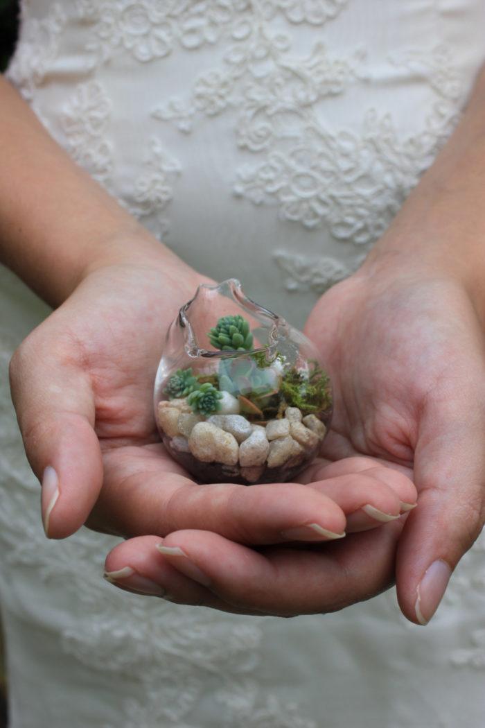 terrari-vasi-mini-serre-piante-appartamento-05
