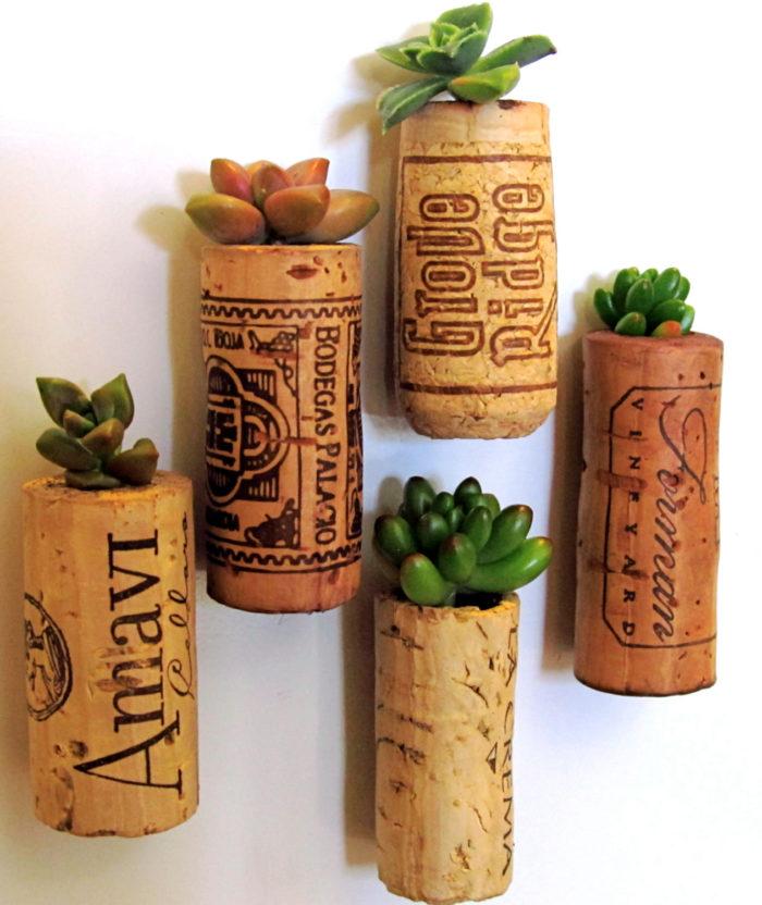terrari-vasi-mini-serre-piante-appartamento-14