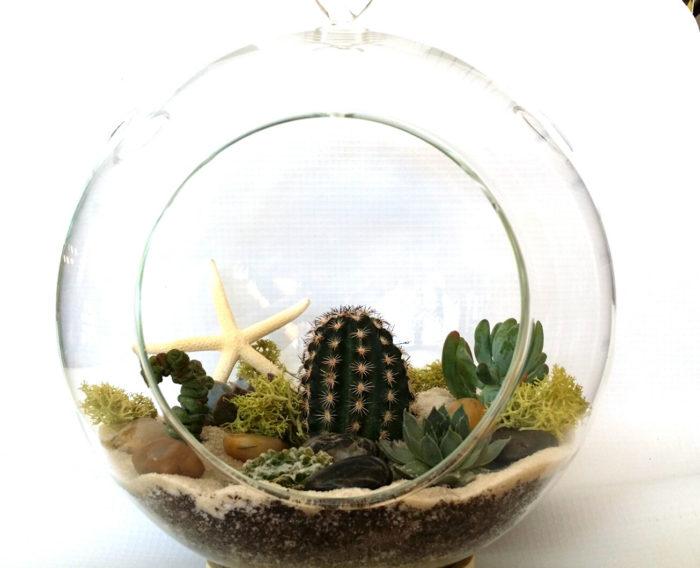 terrari-vasi-mini-serre-piante-appartamento-15