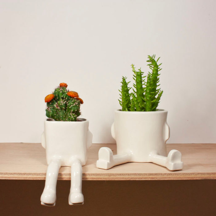 terrari-vasi-mini-serre-piante-appartamento-17