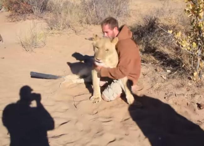 video-leonessa-abbandonata-abbraccio-2