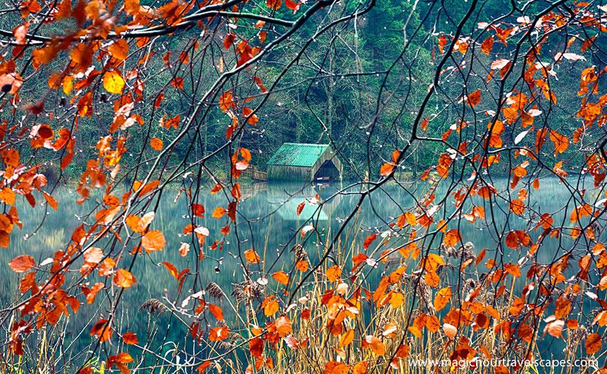 fotografia-autunno-02