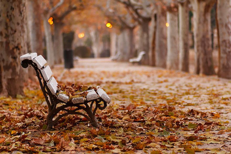 fotografia-autunno-03