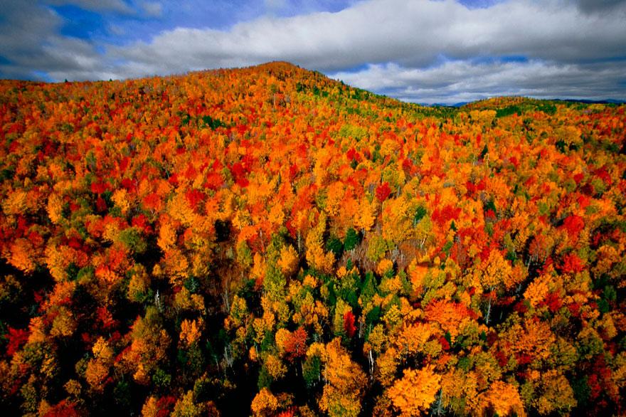 fotografia-autunno-08