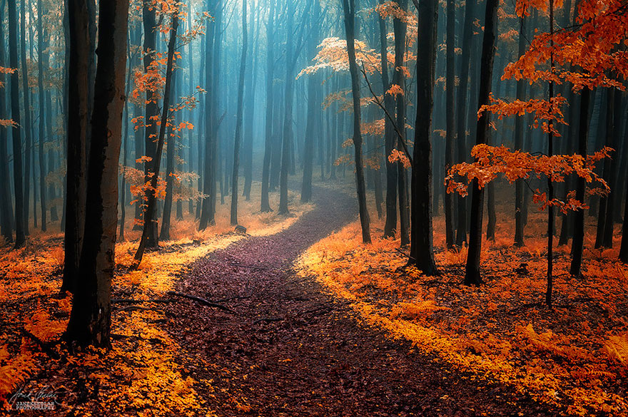 fotografia-autunno-09
