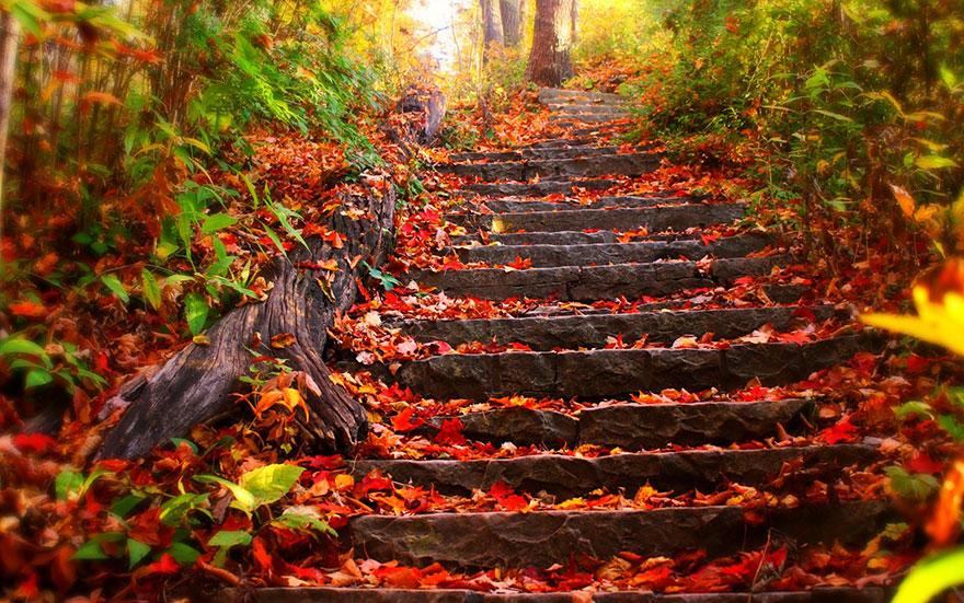 fotografia-autunno-10