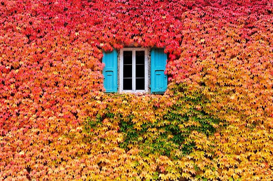 fotografia-autunno-12