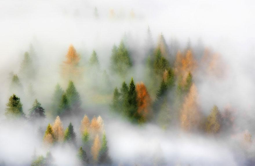 fotografia-autunno-15