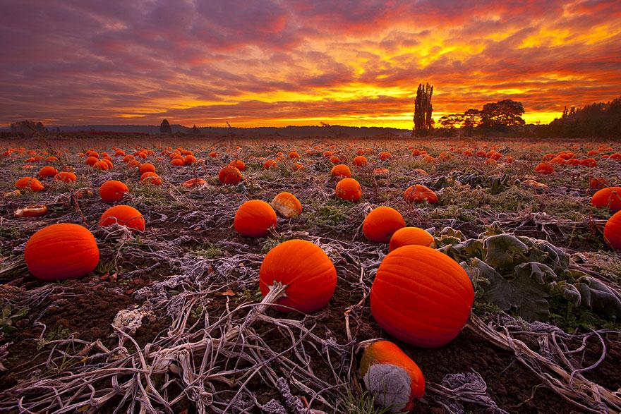 fotografia-autunno-18