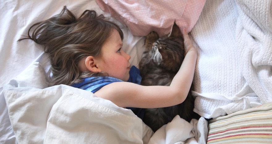 gatto-terapia-autismo-bambina-iris-grace-01