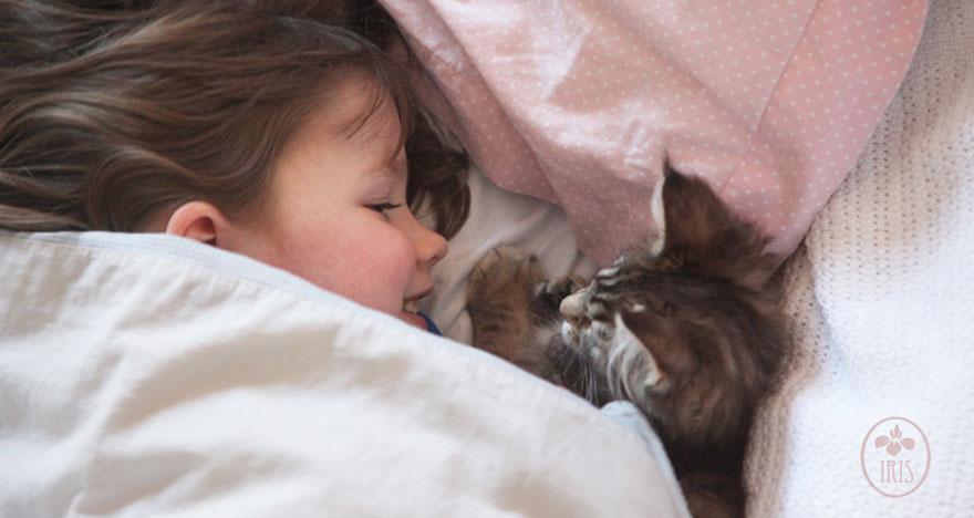 gatto-terapia-autismo-bambina-iris-grace-02