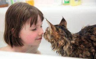 La meravigliosa amicizia tra una bambina di 5 anni affetta da autismo e il suo gatto