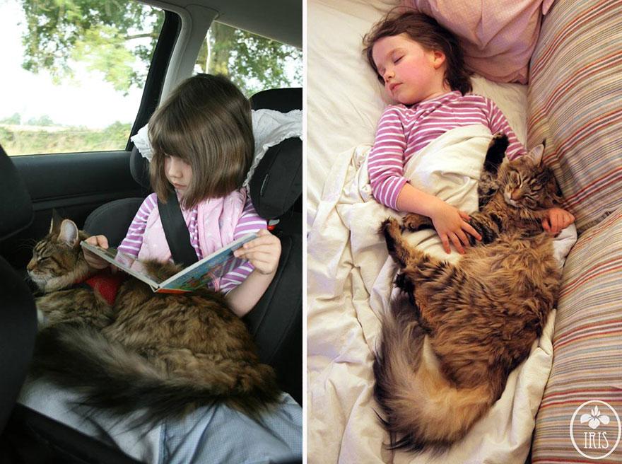 gatto-terapia-autismo-bambina-iris-grace-04